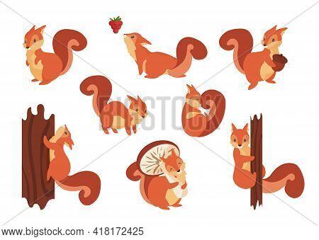 Cartoon Squirrel. Cute Wild Animal With Acorn. Playful Fluffy Creature Holding Mushroom And Climbing