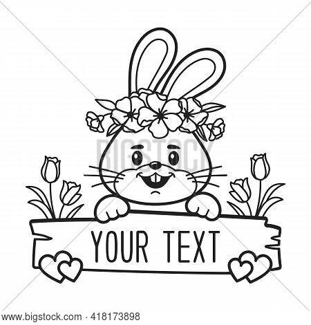Vector Bunny Split Monogram, Bunny Face Frame, Baby Print For Boys And Girls, Newborn