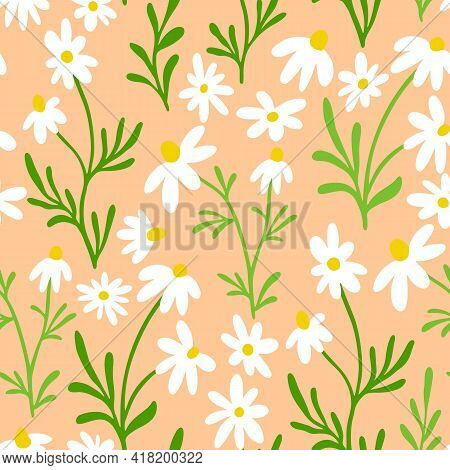 Chamomile And Daisy Seamless Pattern. Wildflower Print Design With Hand Drawn Flowers On Light Beige