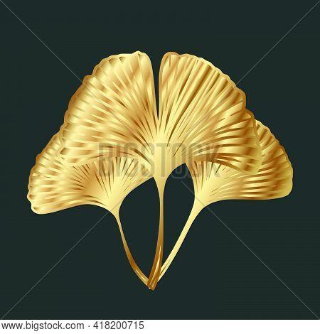Ginkgo Or Gingko Biloba Golden Leaves. Nature Botanical Gold Vector Illustration, Decorative Metal G