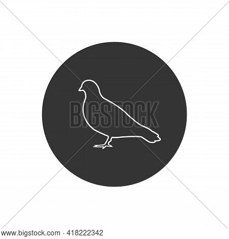 Vector Pigeon Silhouette Line White Icon On White