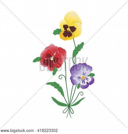 A Graceful Bouquet Of Three Pansy Flowers. Сolorful Spring-summer Flower Arrangement. Garden Bloom.