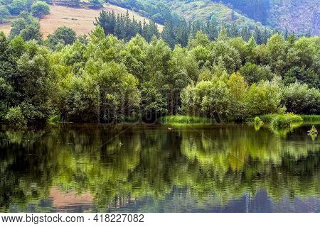 Green Vegetation At The Edge Of The Side With Reflection In The Water And Idyllic Landscape. Asturia