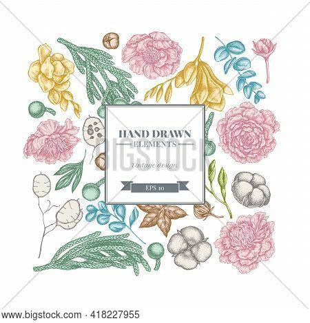 Square Floral Design With Pastel Ficus, Eucalyptus, Peony, Cotton, Freesia, Brunia Stock Illustratio