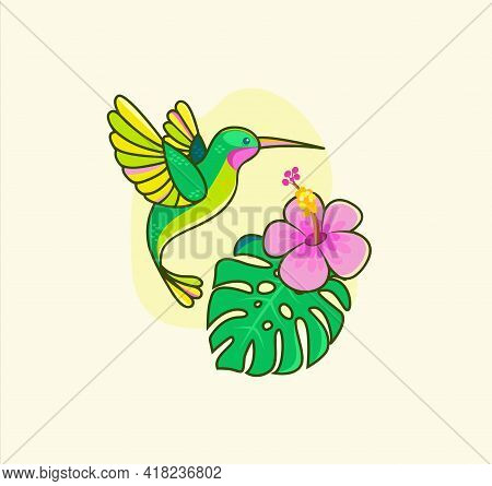 Funny Colorful Hummingbird Flying Near Tropical Flower.colibri For Design Birthday Cards, Zoo Ad, Fa