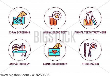 Animal Checkup Color Line Icons Set. Isolated Vector Element. Outline Pictograms For Web Page, Mobil