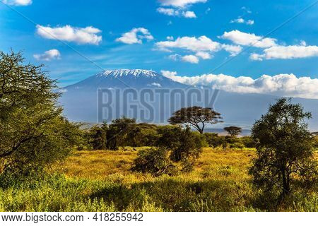 Amboseli Park is the most visited park in Kenya. The famous snow peak of Kilimanjaro. Savanna with rare bushes and desert stocks. The concept of active, exotic, ecological and photo tourism
