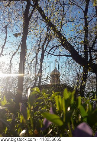 Through The Foliage Of Trees And Flowers, You Can See The Dome Of A Christian Chapel Against The Bac