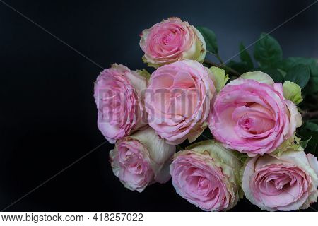 A Delicate Bouquet Of Beautiful Roses On A Dark Black Background
