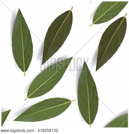 Bay Leaf In Abstract Style. Beautiful Pattern With Bay Leaf. Vector Seamless Pattern.