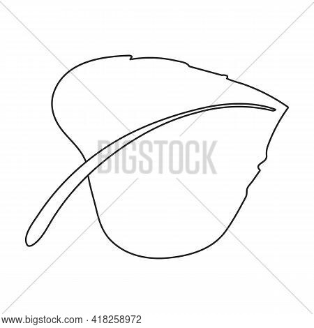 Cock Vector Outline Icon. Vector Illustration Rooster On White Background. Isolated Outline Illustra