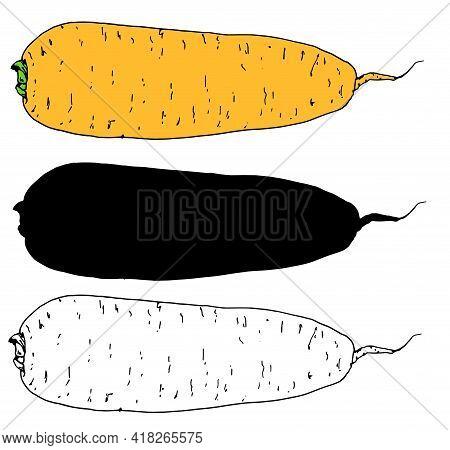 Cartoon On Yellow Backdrop. Vintage Print.vector Of Orange Carrots Randomly Placed On A White Backgr