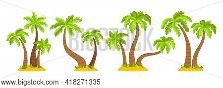 Tropical Islands With Palm Trees Flat Cartoon Set. Coconut Palm Trees Nature Design Element. Hand Dr