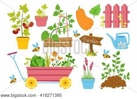 Gardening Tools Cartoon Set. Fence, Vegetable Seedlings And Rubber Wooden Arrow Pointer. Equipment W