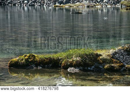 Rock With Mosses And Grasses Near Water Edge Of Mountain Lake In Sunlight. Scenic Landscape With Mou