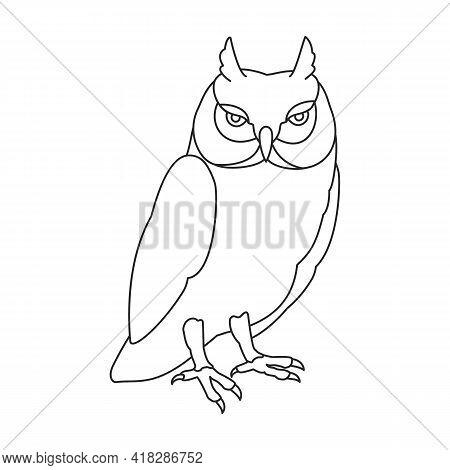 Owl Vector Outline Icon. Vector Illustration Bird On White Background. Isolated Outline Illustration