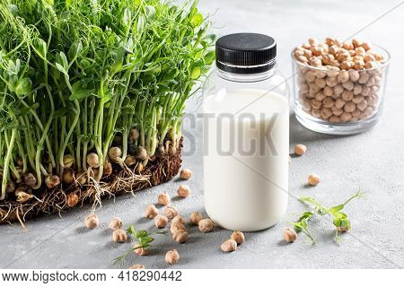 Chickpea Vegetarian Milk In Bottle, Raw Chickpeas In Glass On Light Gray Background. Non-dairy Lacto