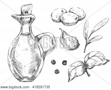 Glass Oil Bottle With Olives And Spices Vintage Illustration, In Sketchy Hand-drawn Style