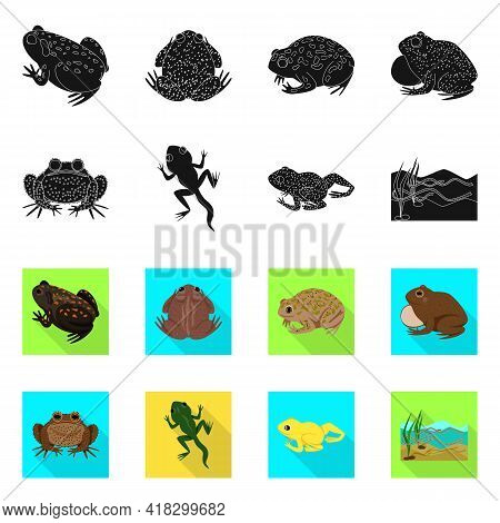 Vector Illustration Of Wildlife And Bog Icon. Set Of Wildlife And Reptile Vector Icon For Stock.