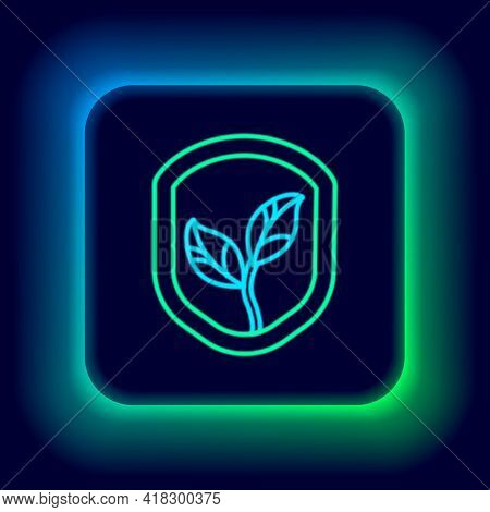 Glowing Neon Line Shield With Leaf Icon Isolated On Black Background. Eco-friendly Security Shield W