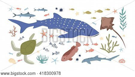 Set Of Sea And Ocean Habitats. Bundle Of Marine Fishes, Animals And Plants. Small Fry, Whale Shark,
