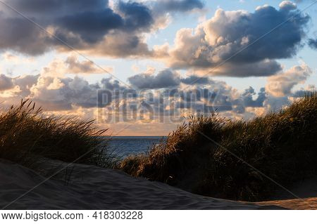 Dune Grass Lit By The Sunset With In The Background The North Sea With A Beautiful Cloudscape