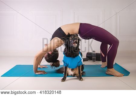Sport With A Dog. Attractive Young Woman Working Out On The Blue Fitness Mat With Her Dog. Athletic