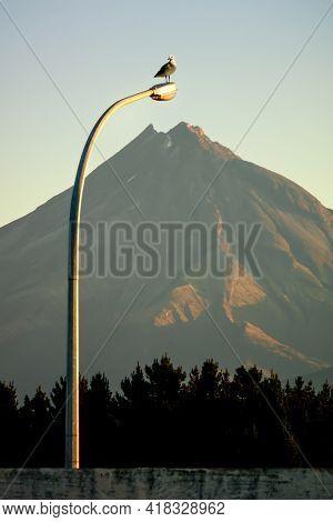 An image of Mt. Taranaki with street light
