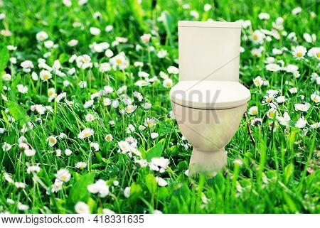 Fresh Flush Toilet Bowl In The Meadow