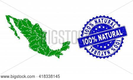 Mexico Mosaic Map Created From Coca Leaf Design Elements, And 100 Percent Natural Scratched Seal Sta