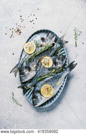 Uncooked Dorado Or Sea Bream Fish With Lemon, Herbs, Oil, Vegetables And Spices On Concrete Backgrou