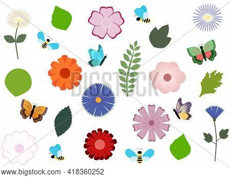 Vector Illustration. Set Of Isolated Flowers, Leaves And Insects. Variety Of Species