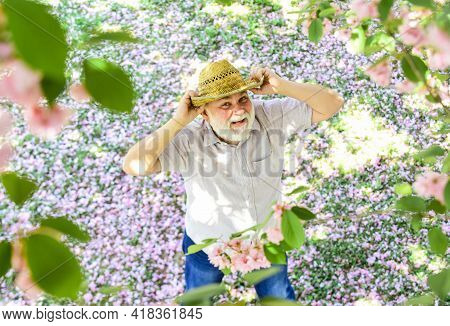 Spring Garden. Senior Man With Gray Beard In Straw Hat. Happy Retirement. Grandfather Smiling While