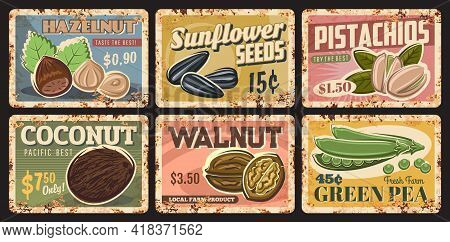 Nuts, Legumes And Seeds Vintage Rusty Plates Of Vector Food. Pistachio, Walnut, Coconut And Hazelnut