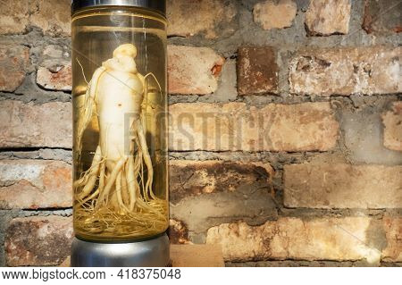 Ginseng Root In A Glass Jar. Medicinal Tincture Of Ginseng Root Against The Background Of A Brick Wa