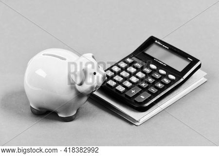 Economics And Finance. Calculate Profit. Piggy Bank Pink Pig And Calculator. Business Administration