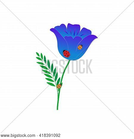 Ladybirds On Blue Flower On White Background. Cute Colorful Sign Insect And Flower Symbol Spring, Su