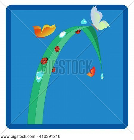 Ladybird Icon. Illustration Ladybug In Blue Square. Cute Colorful Sign Red Insect Symbol Spring, Sum
