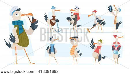 Seagull. Bird Sailor Or Captain In Ocean Seaside Exact Vector Funny Mascot In Cartoon Style