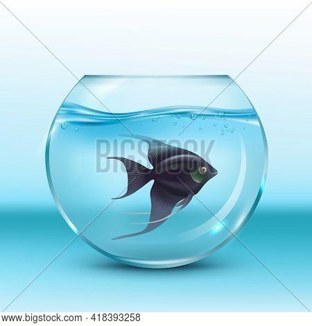 Fish In Aquarium. Underwater Animals Swimming In Decorative Aquarium Decent Vector Realistic Illustr