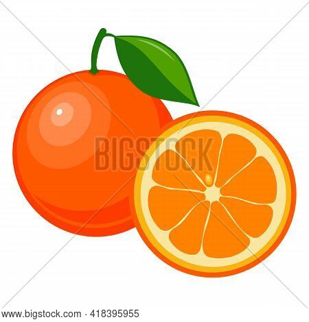 Drawn Ripe Orange Fruit. Ripe Orange Isolated On White Background. Drawn Fruit With Leaf. Whole And