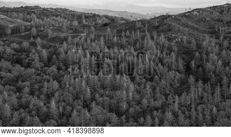 Epic Winter  Black And White Landscape Image View From Holme Fell In Lake District Towards Snow Capp