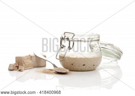 Different Types Of Yeast. Fresh Pressed, Dry Instant Yeast And Active Wheat Sourdough Starter (wild
