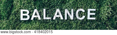 Word Balance On Moss, Green Grass Background. Top View. Copy Space. Banner. Biophilia Trend. Nature
