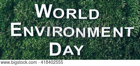 Inscription World Environment Day On Moss, Green Grass Background. Top View. Copy Space. Banner. Bio