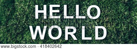 Inscription Hello World On Moss, Green Grass Background. Top View. Copy Space. Banner. Biophilia Con