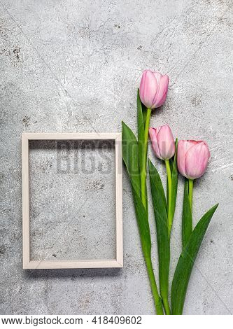 Fresh Pink Tulip Flowers On Ultimate Gray Wall