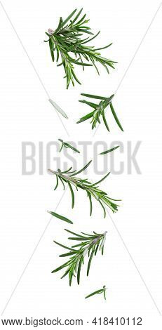 Flying Fresh Leaves And Twigs Of Rosemary On White Background