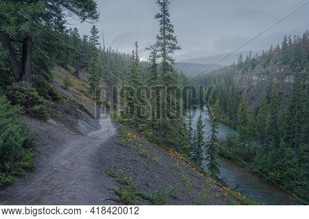 Winding Road Leading To A Misty Forest By A River In The Mountains. Foggy, Rainy Day In Jasper Natio