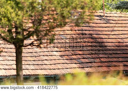 Old Village House Near Krakow. Old Clay Tiles On A Large Country House.